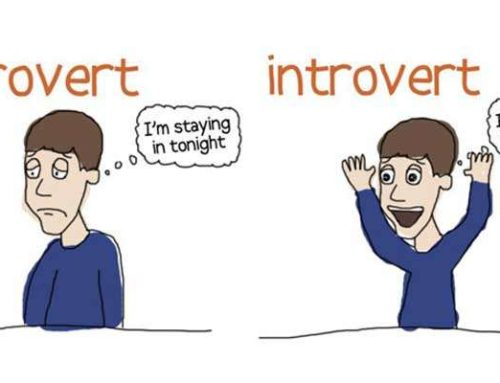 dating strategies for introverts Image from: sheknowscomnot all women are born social butterflies with the guts to walk up to a man and start a conversation some of us prefer to keep to ourselves, and although there are positive qualities found in both introverted and extroverted personalities, when it comes to dating, the shy gi.